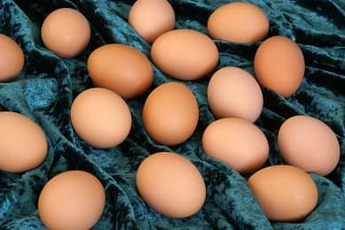Egg Home Remedy for Healthy and Soft Skin